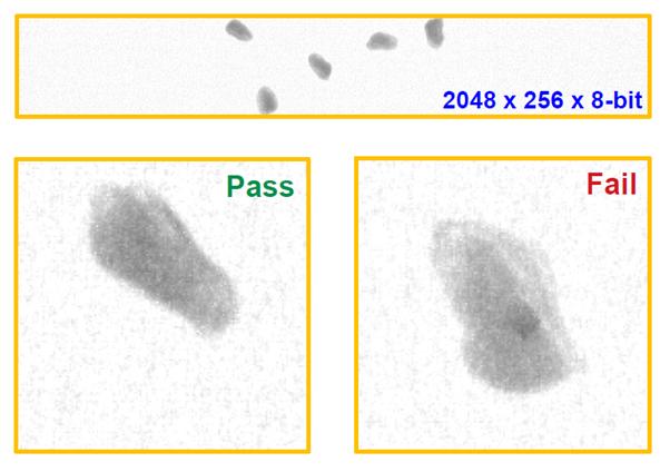 image-png-Jul-26-2021-09-31-18-61-AM